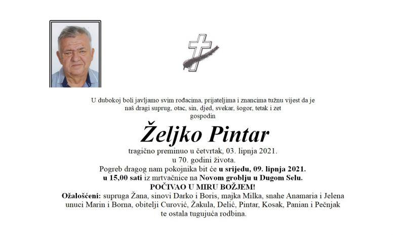 pintar_željko