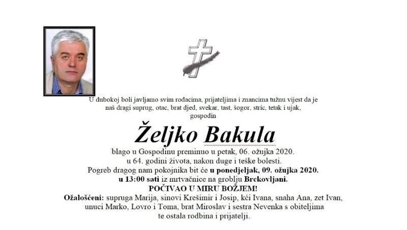 zeljko_bakula